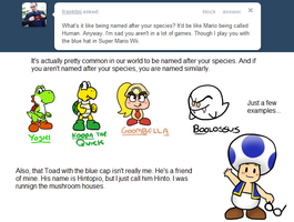 Ask Toad - Name? by pocket-arsenal