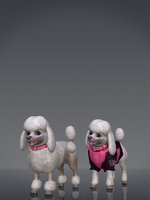 Poodles by deexie