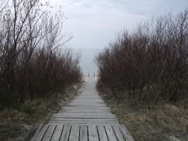 Path to the sea by SpalvotasZaltys