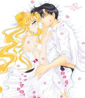 Usagi and Mamoru_fragment by Pillara