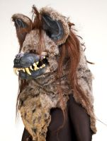 Hyena: View 1 by MonicaMcClain