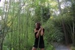 Bamboo Forest by JTPphotography