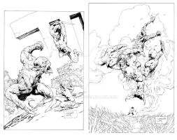 Conan the Cimmerian Cover Inks by devgear