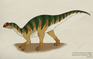 040--MUTTABURRASAURUS LANGDONI by Green-Mamba