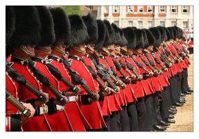 Trooping The Colour - 5 by syphonvector