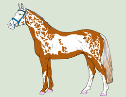 Mare Adopt 3 {Closed} by RockyMountainRanch