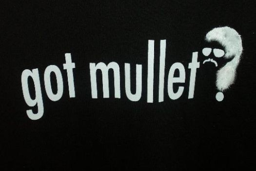 Got Mullet? by PianoFreak