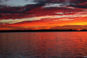 Fall Sunset Series #99 by LifeThroughALens84