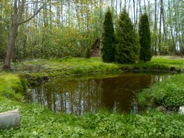 Haapsalu nature 9 by MASYON