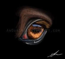 eye practice by Valanee