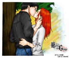 Harry and Ginny by nami86 by nelsonaof