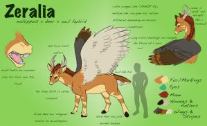 Zeralia - Reference Sheet by zeralia