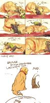 dog THOR cat LOKI 2 by NsosDA