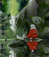 Inu Yasha Reflection by druihd