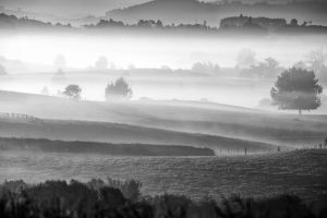 Waikato Morning by Capturing-the-Light