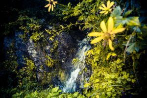 Yellow Falls on Yellow Mountain by PhotoAlterations