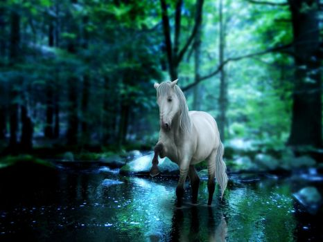 Horse In Forest Lake by Misty-B6