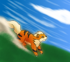 Growlithe attacked by Squirrelflighty