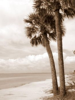 Southern Weather II by paintedreams001