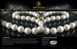 ALBAN'Z COLLECTION WEBSITE layout by manteraku