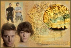 SUPERNATURAL by farahwinchester