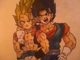 Gogeta and Vegito by maytheawesomex99