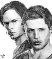 The Winchesters by acrylicbeach