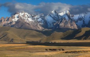 Nature of Central Asia by Kesman