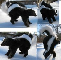 Realistic Skunk Plush Toy by Jarahamee