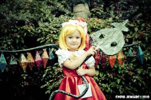Flandre Scarlet - Touhou 2 by ChibiHime909