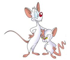 pinky and the brain by livefunknouveau