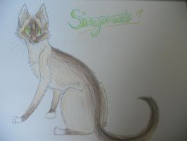 Singemask design idea by Finchwing