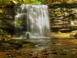 Ricketts Glen State Park 56 by Dracoart-Stock
