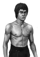 Bruce Lee by Spider-Loot
