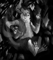 Tkr-Greyscale commission 2- by RogueLiger