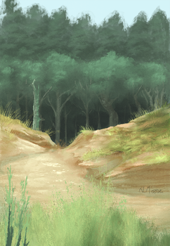 Woods and Sand by tashcrow