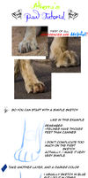 Paw tutorial by Atherra