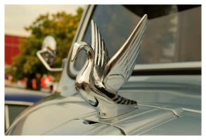 Chrome Swan Hood Ornament by TheMan268