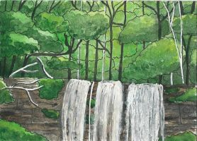 forest with waterfall by Ka-Kind