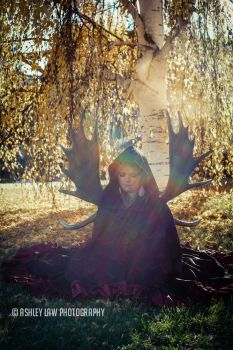Fall Princess by ashleylawphotography