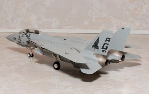 Hobby Crap F-14A Tomcat Finished 2 by AEisnor