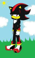 request:Shadow the hedgehog by shadowgem68