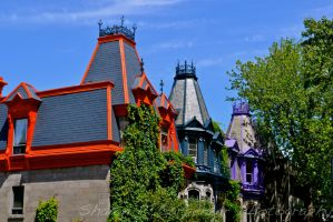 Multicolored Rooftops by spcbrass