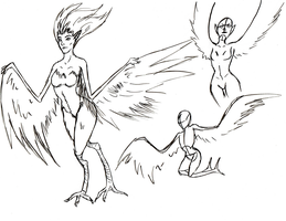 Harpy sketches by justthebutts