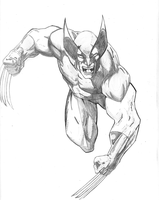 DSC-Wolverine-X-Force-original by vitasimplex