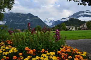 Interlaken Ost by dandelion-field