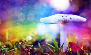 Colourful Mushroom by TheBroth3R