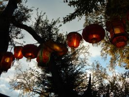 Chinese Lanterns by OceanPelt
