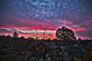 At dawn in HDR by piotrkol91