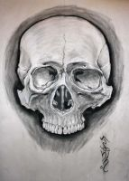 Big A$$ Charcoal skull drawing! by ZombieWil